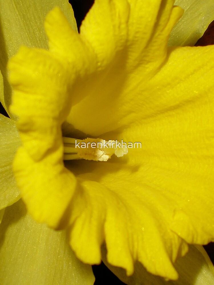 daffodil stamen by karenkirkham
