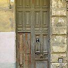 Battered Door by Ethna Gillespie
