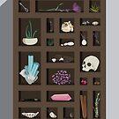 Cabinet of Curiosities by jbott