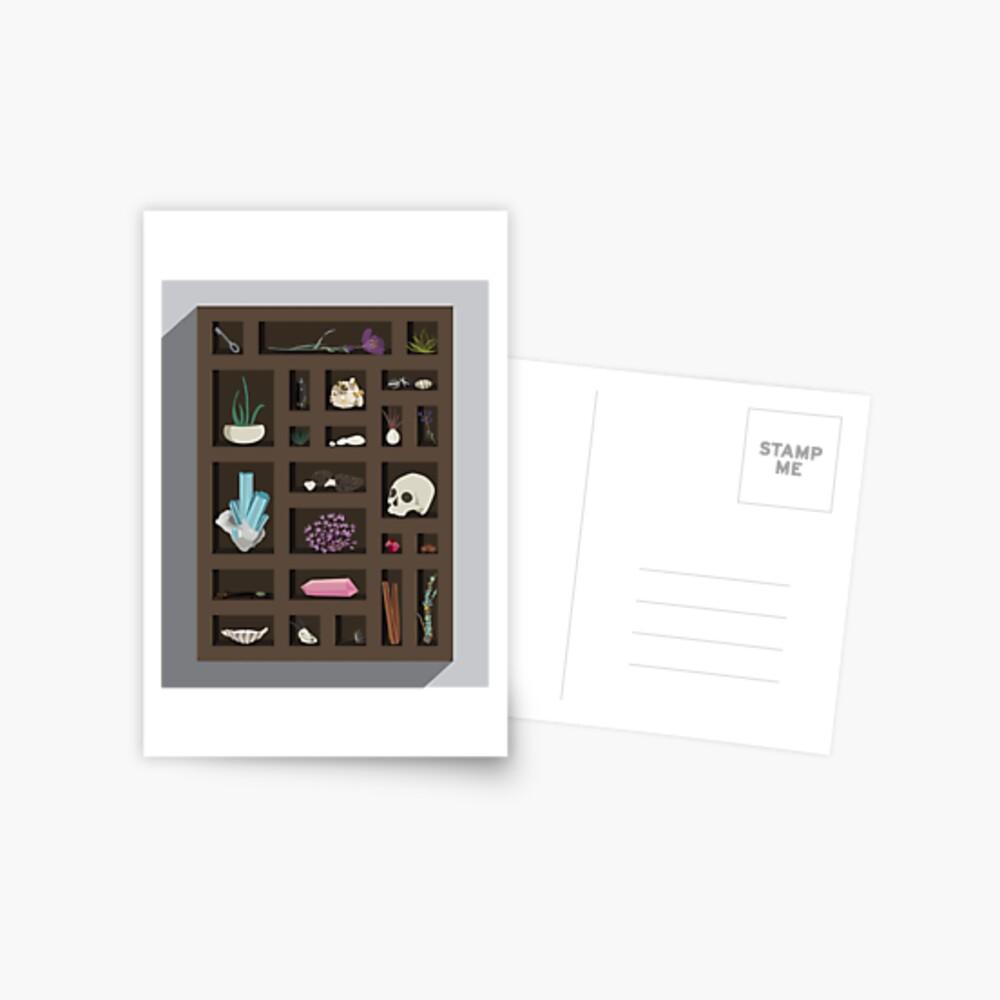 Cabinet of Curiosities Postcard