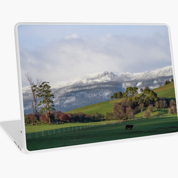~ Snow on the Tiers ~ Laptop Skin