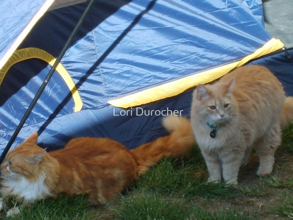 Camping friends by Lori Durocher