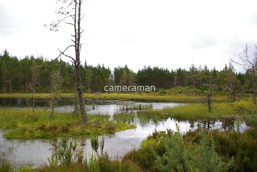 marshland scotland 2 by cameraman
