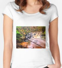 Exotic long exposure Women's Fitted Scoop T-Shirt