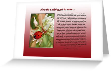 How the Ladybug got its name . . .  by Bonnie T.  Barry