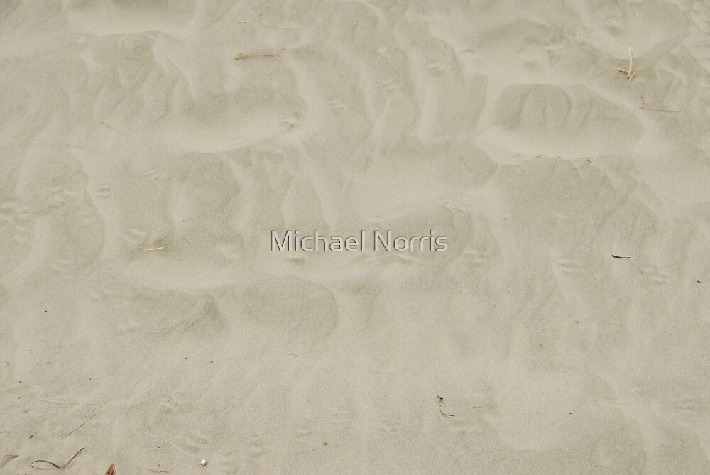 Tracks in Sand by Michael Norris