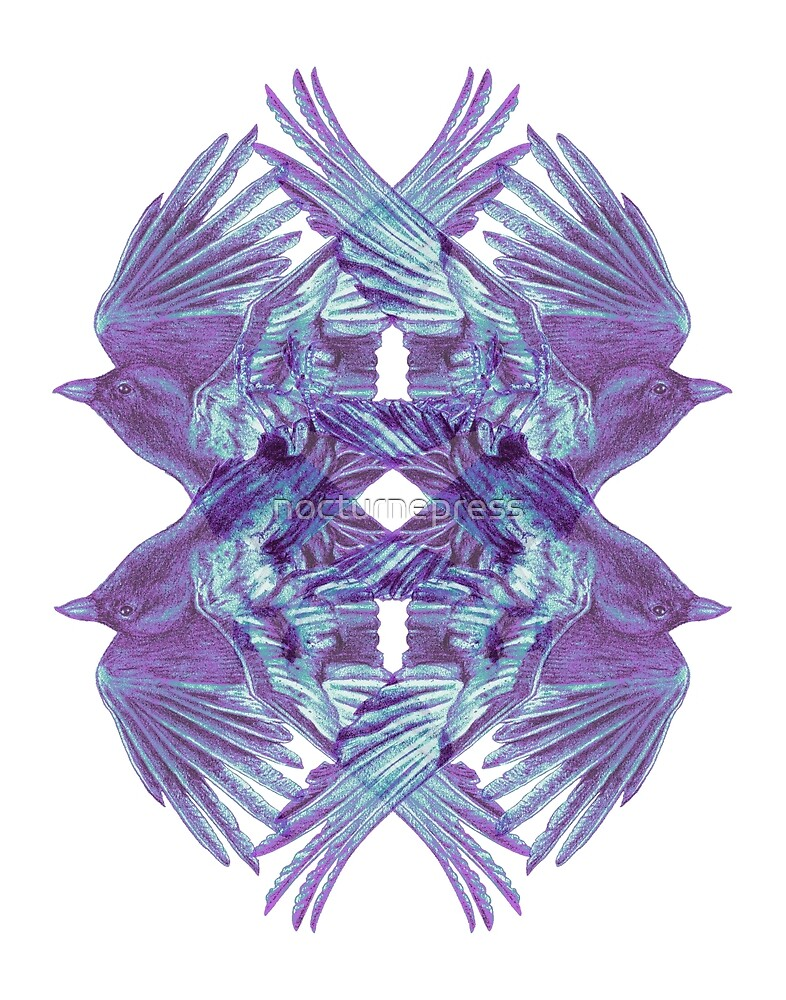 Kaleidoscope by nocturnepress