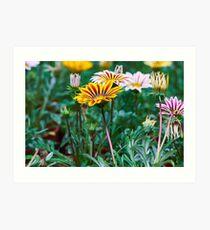 Gardener Art Print