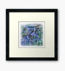The Atlas Of Dreams - Color Plate 28 Framed Print
