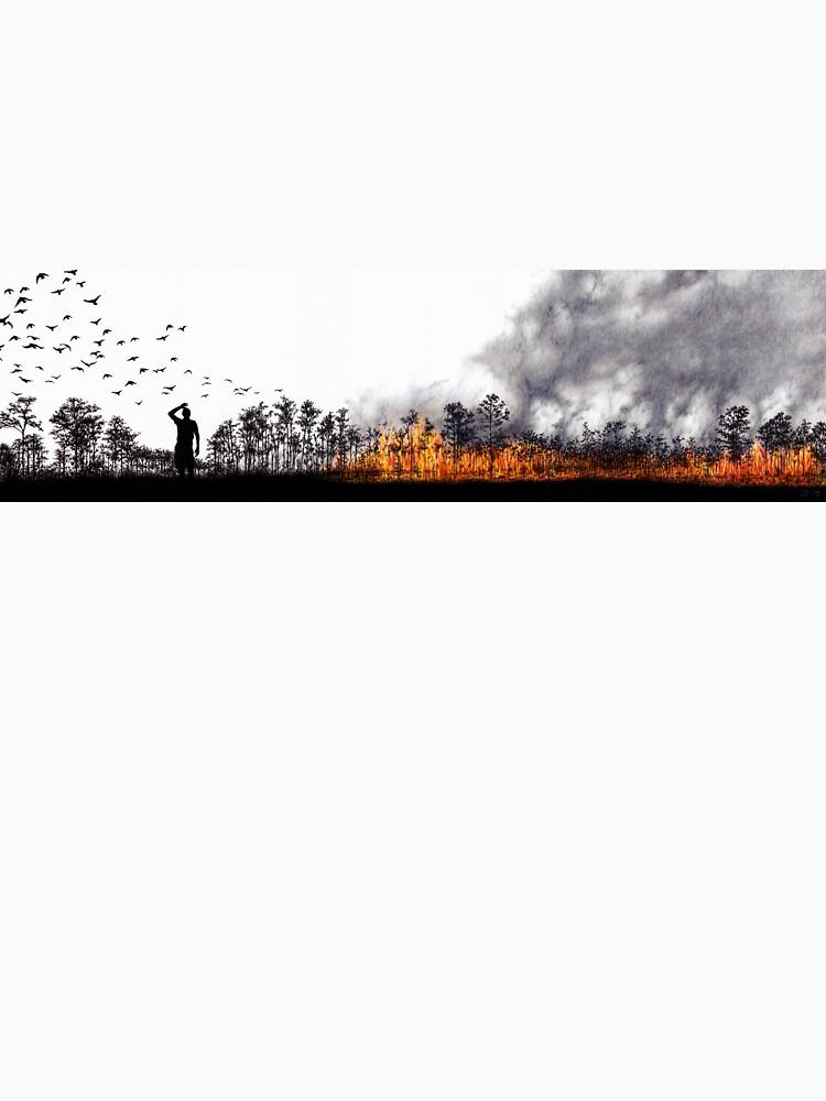 Wildfire by LFurtwaengler