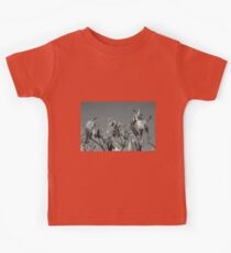 Milkweed HDR Kids Clothes
