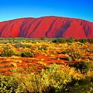 Ayers Rock by Mark Higgins
