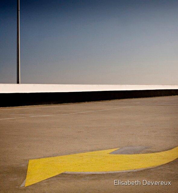 Arrow by Elisabeth Devereux