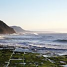 Wollongong coast, Wombarra by Geoff Payne