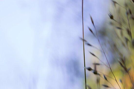 weeds i by highwaywitchery