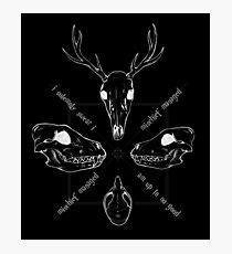 Marauder Skulls, on black Photographic Print