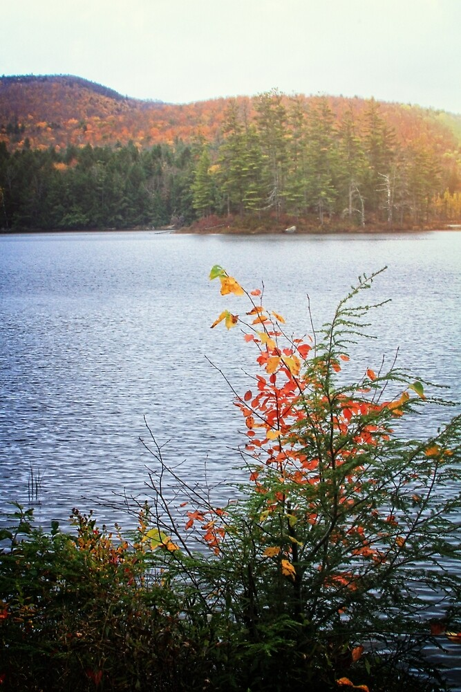 Beside the Lake by Nazareth