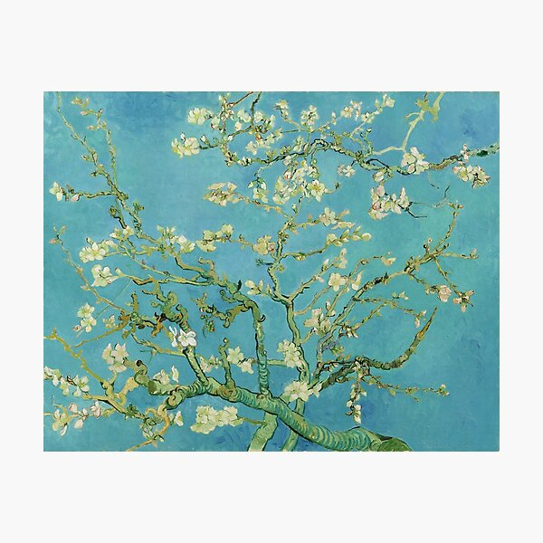 Almond Blossoms by Vincent van Gogh (1890) Photographic Print