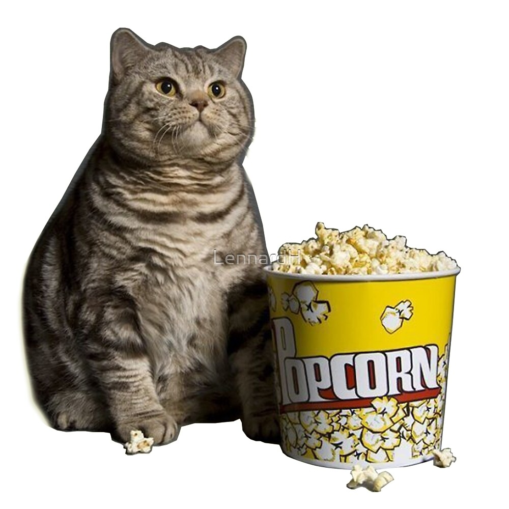popcorn cat by LennardH