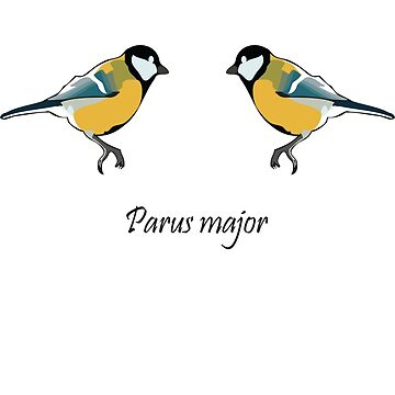 Great Tits - Parus major by Sauropod8