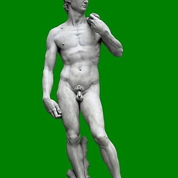 Michelangelo's David - Christmas Edition by EIDO