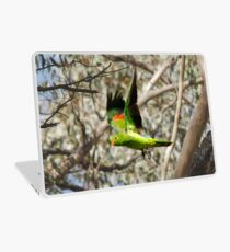 King Parrot Free as a Bird Laptop Skin