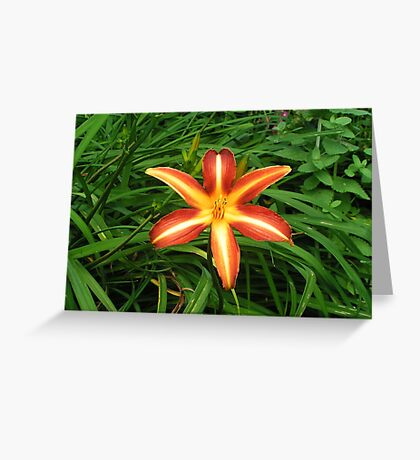 Firework In Lucious Green Greeting Card