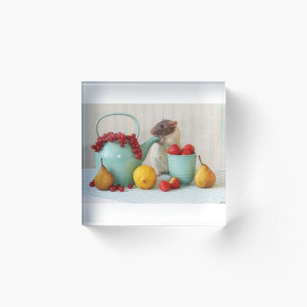Snoozy loves fruit Acrylic Block