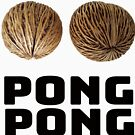 Pong Pong Tree Seeds by Thinglish Lifestyle