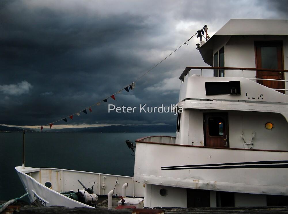 Moonlight Serenade For A White Boat by Peter Kurdulija