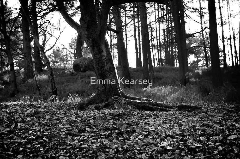 Autumn by Emma Kearsey