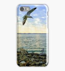 Beautiful Day at the Lake iPhone Case/Skin