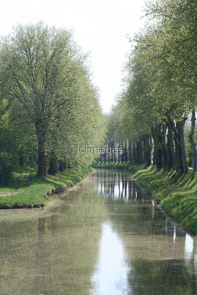 Tree Lined Canal by jcjimages