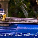 Save water,bath with a friend! by GlennRoger