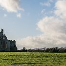 Dunbrody Abbey by Martina Fagan