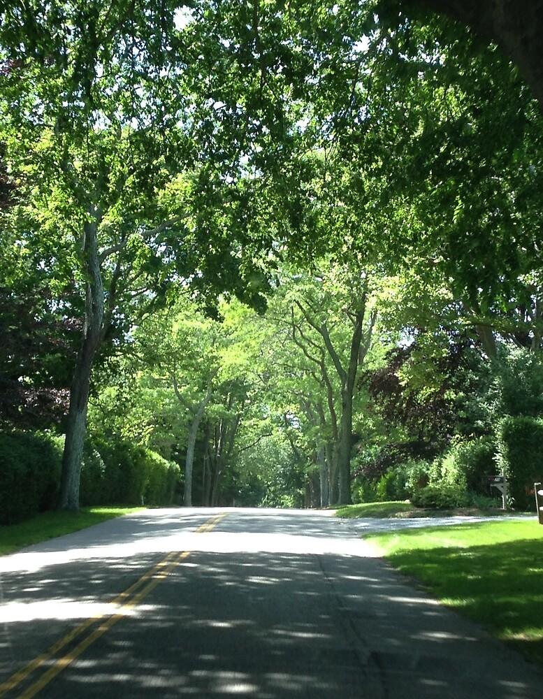 East Hampton, Long Island by Kalileu