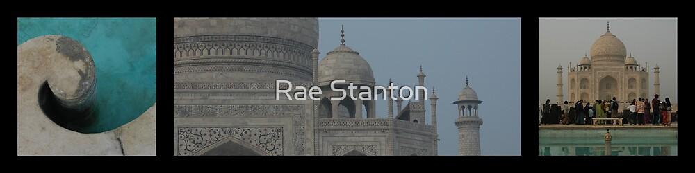 Taj Mahal (Option 2) by Rae Stanton