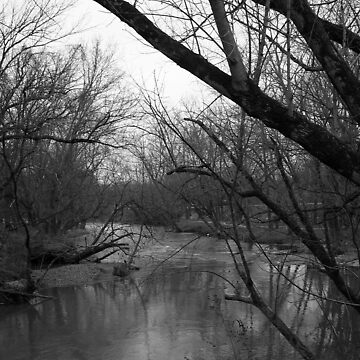 creek by dannielle