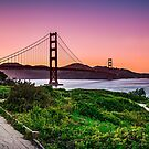 golden gate by ALEX GRICHENKO
