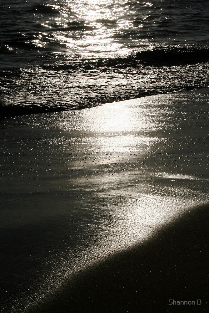 Reflective Sands by Shannon B