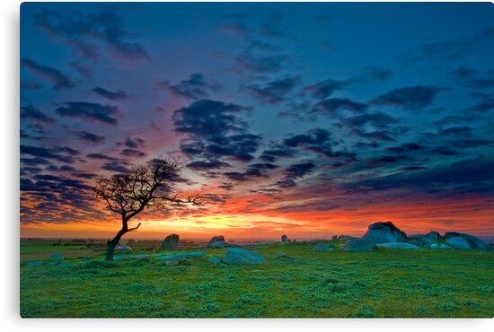 Dog Rocks Sunset by Neil
