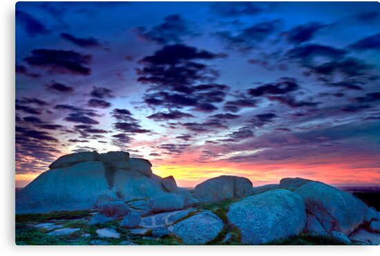 Dog Rocks rocks by Neil