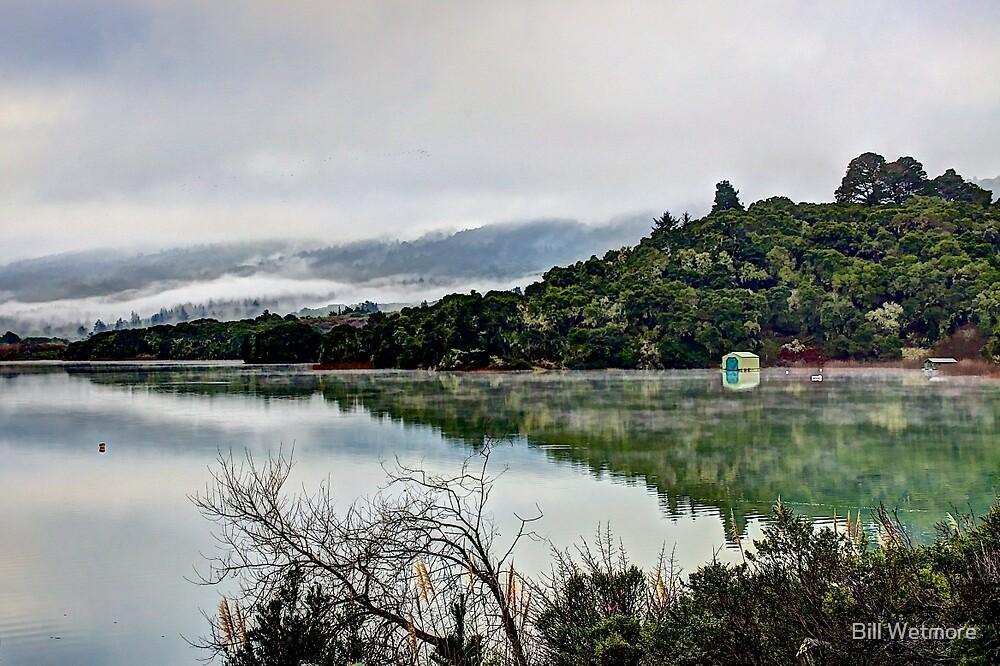 Upper Crystal Springs by Bill Wetmore