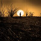 Solitude by CarolM