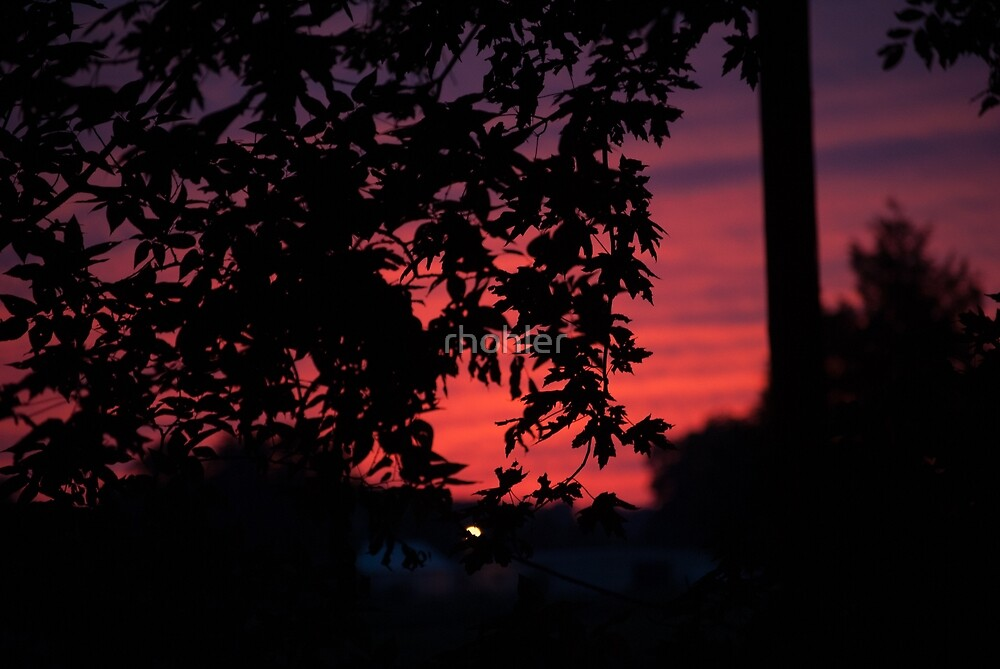 Pink Sunset by rhohler