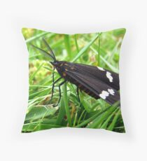 Flying Clouds!  - Magpie Moth - NZ Throw Pillow