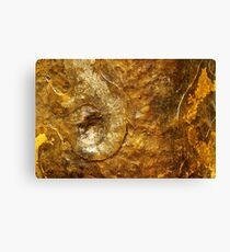 Bronze and Gold Wall Art Canvas Print
