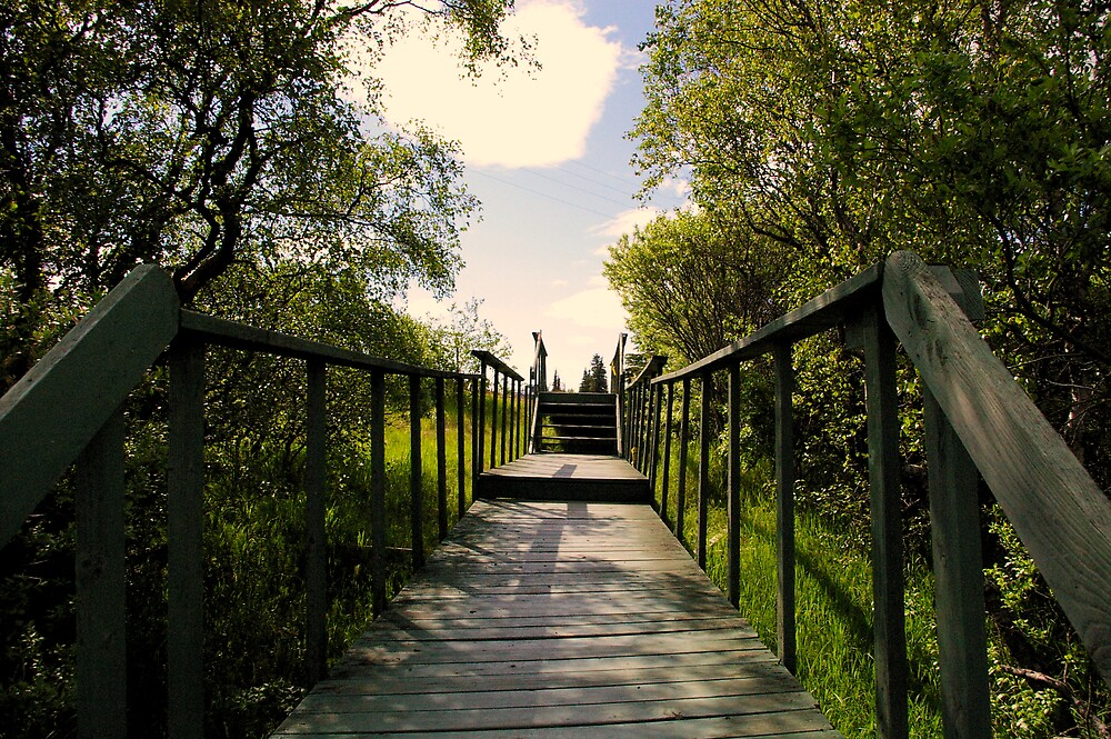 Old Bridge by Chris Popa