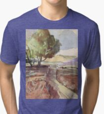 Winter in Tarlton Tri-blend T-Shirt