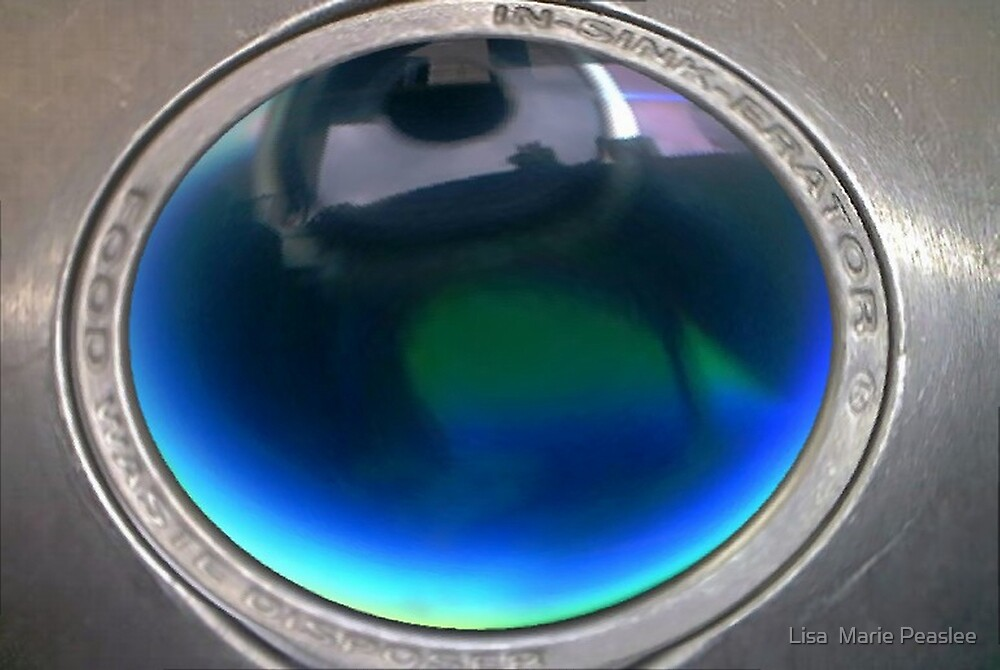 Fish eye- in-sinkerator by Lisa  Marie Peaslee